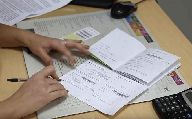 Документы после процедуры чипирования животных